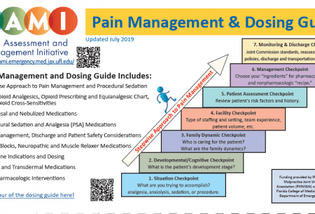 Pain Assessment and Management Initiative » College of