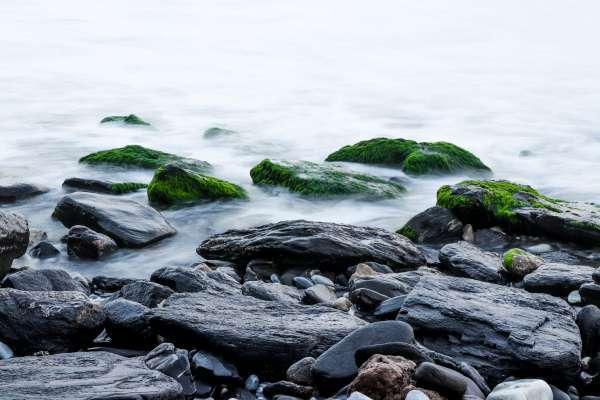 at water's edge with rocks